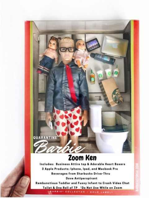 Quarantine Barbie Zoom Ken